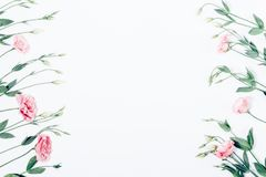 Floral flat lay frame of pink flowers on white background royalty free stock photo
