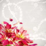 Floral Flower Background Stock Photography