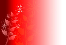 Floral Flower Background Royalty Free Stock Photos