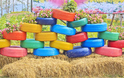 Floral flower bed of colorful automobile tires Stock Photos
