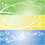 Floral flower and butterfly background Stock Photography