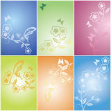Floral flower and butterfly card Stock Image