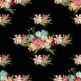 Floral flower cosmos crocus background  illustration Royalty Free Stock Photo