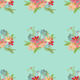 Floral flower cosmos crocus background  illustration Royalty Free Stock Photography