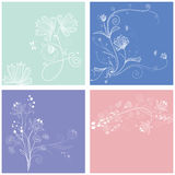 Floral flower greeting card Royalty Free Stock Photography