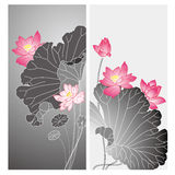 Floral flower greeting card Stock Photos