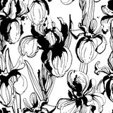 Floral flower iris  seamless hand drawn pattern. Black and white Royalty Free Stock Photography