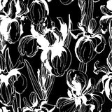 Floral flower iris  seamless hand drawn pattern. Black and white Stock Photos