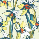 Floral flower narcissus seamless hand drawn pattern.Colored ink Stock Photography