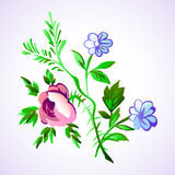 Floral flower set  isolated white doodle vintage element   Stock Photography