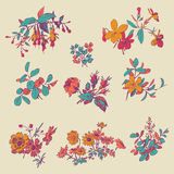 Floral flower set  isolated white doodle vintage element  Royalty Free Stock Photography