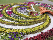 Flowerbed cornucopia. Beautiful flower flowerbed in the Park on the waterfront of the river Svisloch in Minsk Belarus Stock Photos