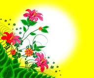 Floral Flowers. Rose pink colour flower with green leafs in yellow background blurred white colour royalty free illustration