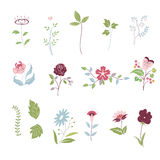 Floral Flowers Royalty Free Stock Image