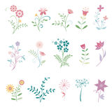Floral Flowers Royalty Free Stock Photo