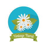 Floral and flowers decorative design. Floral and flowers vintage decorative design, vector illustration Stock Photos