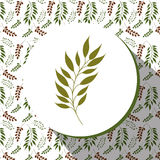 Floral and flowers decorative design. Floral and flowers vintage decorative design, vector illustration Royalty Free Stock Photo