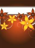 Floral flyer design Stock Photos