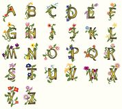 Floral Fonts. Pretty capital fonts decorated with vines, flowers, leaves royalty free illustration