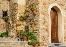 Floral foreshortening in Volterra, Tuscany, Italy royalty free stock photo