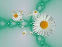 Floral Fractal Μια ανθοδέσμη των μαργαριτών ομορφιάς Εικόνα φύσης Στοκ Φωτογραφία