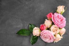 Free Floral Frame Stock Image - 105425531