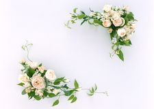 Floral Frame-11. This is a White Background Floral Frame Royalty Free Stock Photography