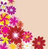 Floral frame. Background with different flowers Stock Photos