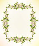 Floral frame Stock Photos
