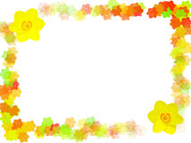 Floral Frame. Colorful floral frame with two daffodil flowers in the corners. White background Royalty Free Stock Photos