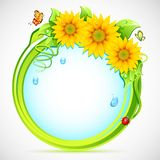 Floral Frame. Illustration of circle with sunflower frame and butterfly Stock Photo