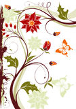 Floral frame. Grunge floral frame with butterfly, element for design,  illustration Royalty Free Stock Images