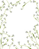 A floral frame Royalty Free Stock Image