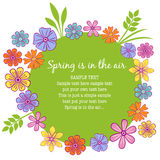 Floral frame. With colorful petals and a springy feeling Royalty Free Stock Image