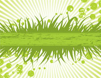 Floral frame. Vector foliage background, with green grass. Spring colors Royalty Free Stock Images