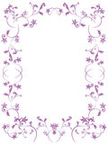 Floral frame. Vector floral frame on white background Royalty Free Stock Images