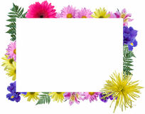 Floral Frame Stock Photography