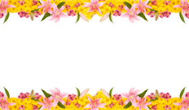 Floral Frame. This is a colorful floral frame. Could be used as a billboard or a card Royalty Free Stock Photos