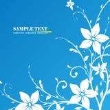 Floral frame. Illustration, blue vector floral frame Royalty Free Stock Images