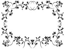 Floral frame. Vector floral frame on white background Royalty Free Stock Photo