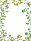 Floral frame. Vector floral frame on white background Royalty Free Stock Photography
