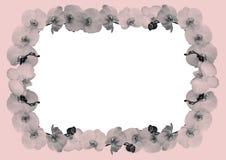 Floral frame. Styled pink floral frame, orchid border Royalty Free Stock Image