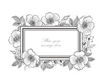 Floral frame background. Flower bouquet border. Floral vintage c Royalty Free Stock Photography