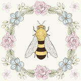 Floral frame and bee in engraving style Stock Image