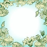Floral frame with chamomiles Royalty Free Stock Photos