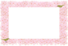 Floral frame of cherry blossoms with small birds Stock Photography