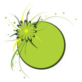 Floral frame, circle, green Stock Photos