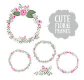 Floral Frame Collection. Stock Photography