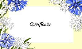 Floral frame of contour and blue spring flowers. For decoration, cards, greetings. Vector illustration.  stock illustration