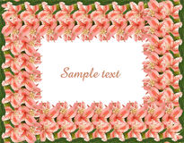 Floral frame with copy space and clipping path Stock Photos